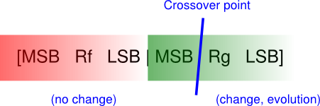 Resistor value encoding and crossover